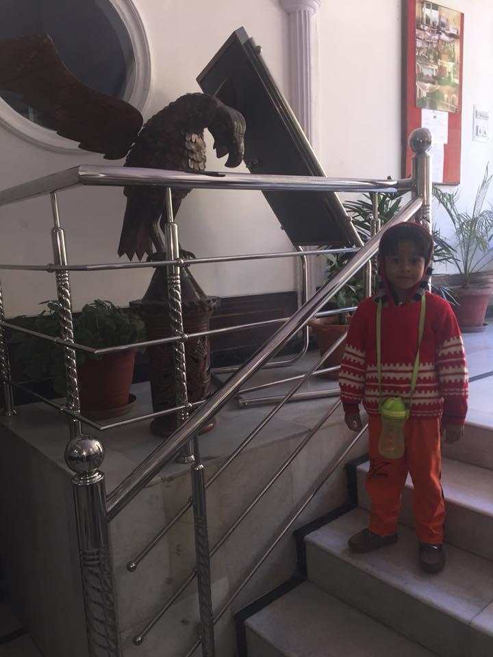 Himachal Hotel Falcon Crest Entrance