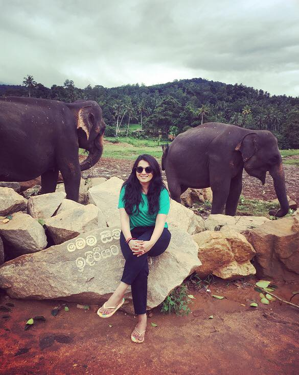 one with elephants