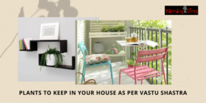 Plants To Keep In Your House As Per Vastu Shastra – Tips From Ritu Deshpande
