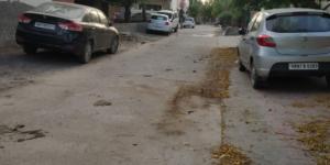 Road Lockdown Stories - Winning Stree